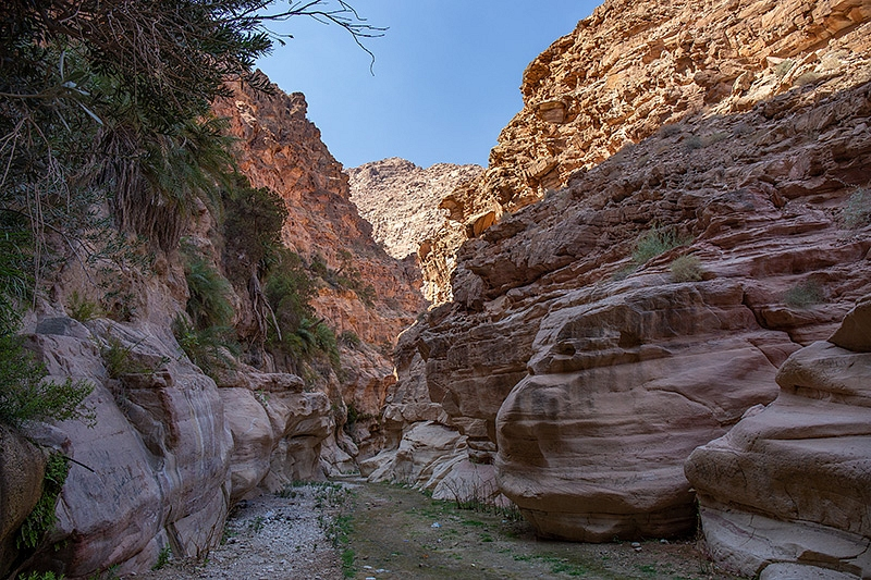 Dana National Park