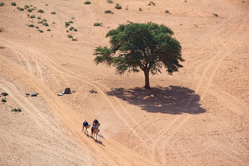 21092018-Wadi-Rum-9036.jpg